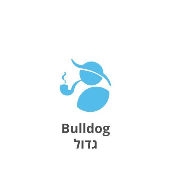Bulldog גדול