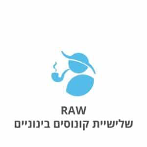 RAW שלישיית קונוסים בינוניים