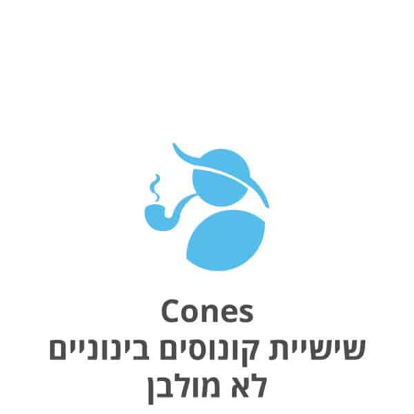Cones שישיית קונוסים בינוניים לא מולבנים
