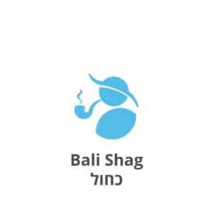 באלי שאג כחול